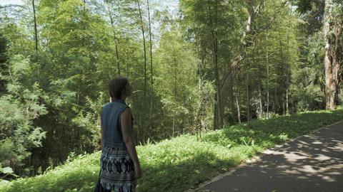 Young girl walking in tropical botanical garden. Batumi, Georgia Footage