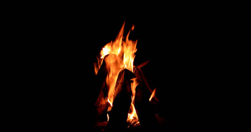 Bonfire close-up. Night Footage