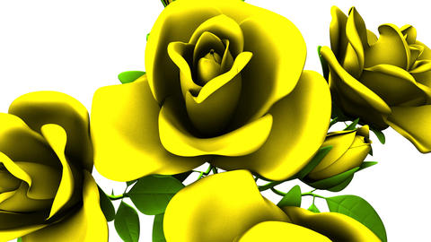Yellow Roses Bouquet On White Background CG動画