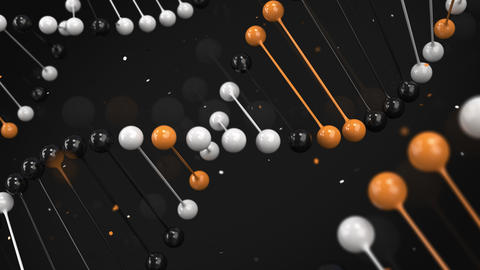 Gloss model of black, white and orange DNA strand on black background CG動画
