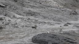 Global warming. Solifluction: rapid destruction of permafrost Live Action