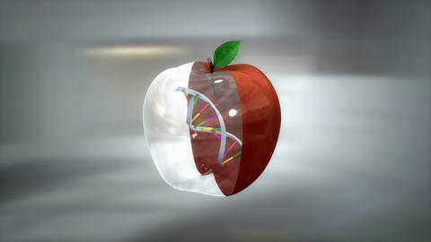 Genetically modified food and fruits, GMO Animation
