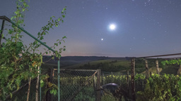Night Sky Timelapse In A Garden With Rising Moon stock footage