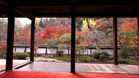 Beautiful view in the Japanese garden (Kyoto) Footage