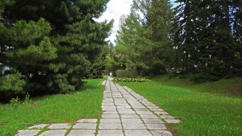 Stone Pathway in a Lush Green Park Footage