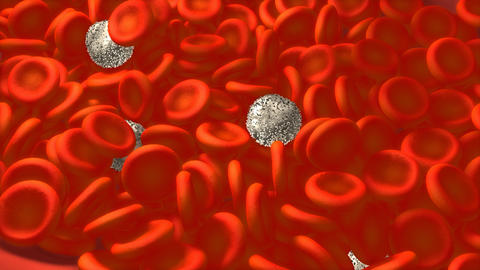 Blood cell, medical science Animation