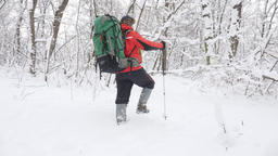Elderly Caucasian smiling man with Hiking Sticks walks through a snowy forest Footage