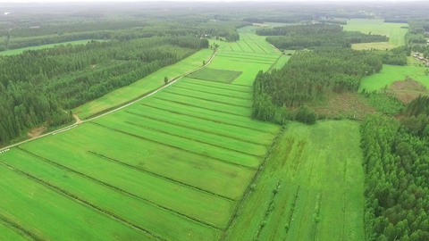 Harvested green hay fields in Finnish countryside Footage