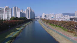 2017 Autumn of Onchencheon, Busan Footage