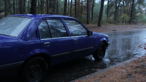 Car in a Rainy Forest Image