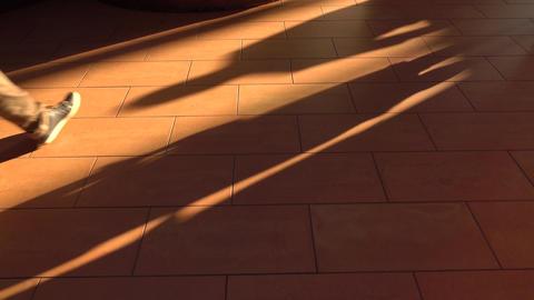 Multiple feet walking on brown sunlit floor. 4K shot Live Action