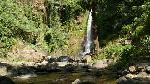 Time lapse of waterfall Gitgit, Bali, Indonesia Live Action