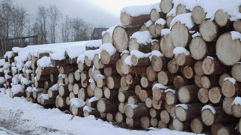 Panoramic view of huddle of logs covered in snow on winter day Footage