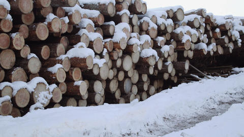 Panoramic view of pile of timber covered in snow on winter day Footage