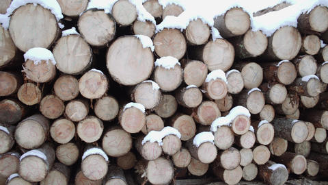 Panoramic view of huddle of lumber covered in snow on winter day Footage