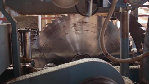 Industrial big circular blade saw at carpenter machine Footage