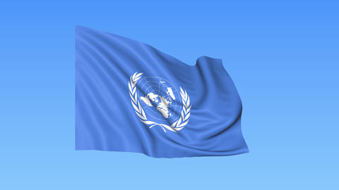 UN organization flapping flag. Seamless looping, 4K ProRes with alpha channel Footage