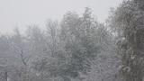 Snowfall 04 Footage