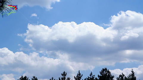 Kite in the skies Stock Video Footage