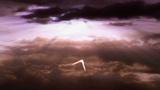 hato 2345 Animation