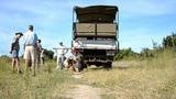 African savannah Footage