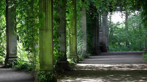 shaded walkway Stock Video Footage