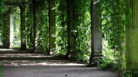 shaded walkway Stock Video Footage