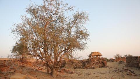 Abandoned Village Footage