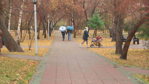 Couple walking in the park Footage