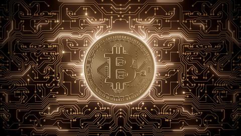 Abstract loop bitcoin world in circuits Animation