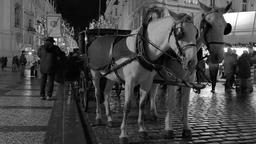 Horse carriage in the old town of Prague Footage