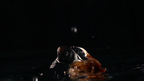 Brown sugar falling into water against black background. Super slow motion shot Footage