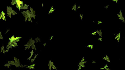Leaf radiating rotation random Animación
