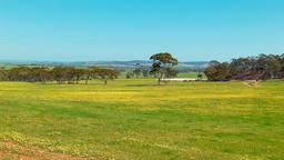 Australian Farm Landscape Scene Footage