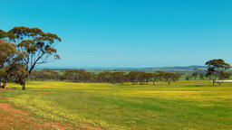 Australian Farm Landscape View Footage