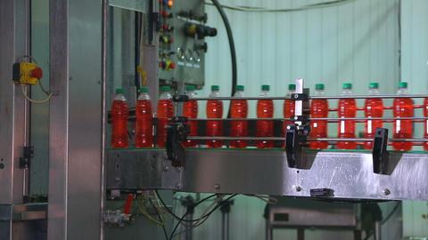 Bottling of juice in plastic bottles Live Action