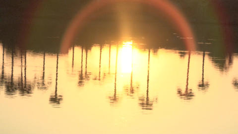 golden sunset reflection on sea, Trees reflection in the water Footage