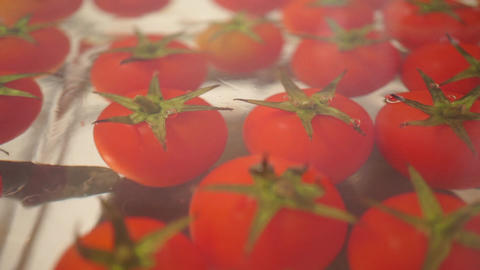 Red cherry tomatoes in a glass pan on a stove, dolly shot Footage