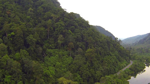 Aerial view of jungle covered mountain, jungle goad and river Live Action