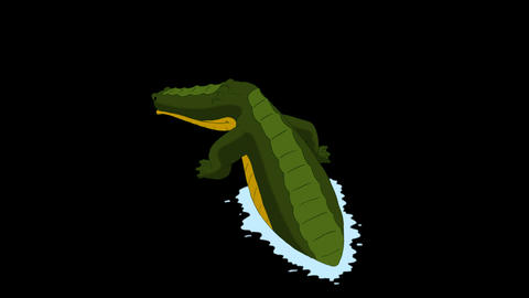 Crocodile Attacks Back View Alpha Animation