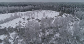 Winter landscape with forest, field. Winter landscape Footage