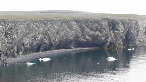 Huge bird rookery of Novaya Zemlya archipelago and drifting ice of Barents sea Footage