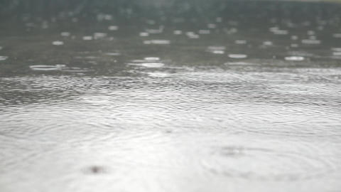 Wonderful footage with droplets of rain on the water Footage