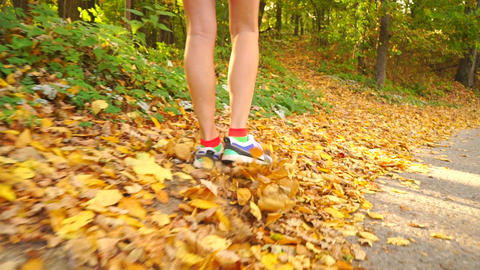Girl walking along autumn road covered with fallen leaves Footage