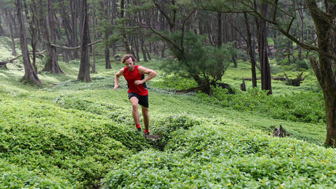 Running Determined Athlete Jogging Amidst Plants In Forest Live Action
