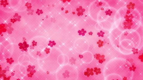 Sakura loop 動画素材, ムービー映像素材