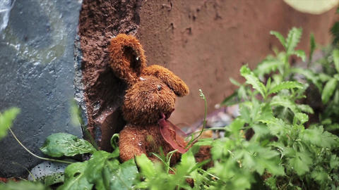 Lost brown plush hare at concrete wall and green grass. Summer. Nobody Live Action