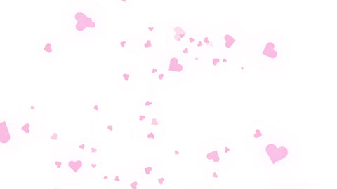 Many pink hearts fall in a white background CG動画