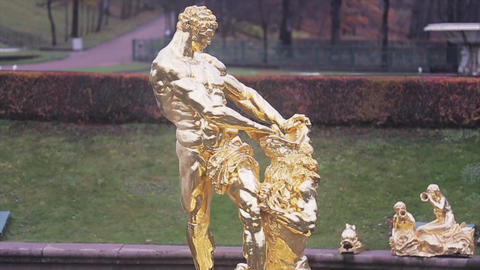 View of golden figure of Samson in Peterhof State museum Reserve. Autumn day Footage