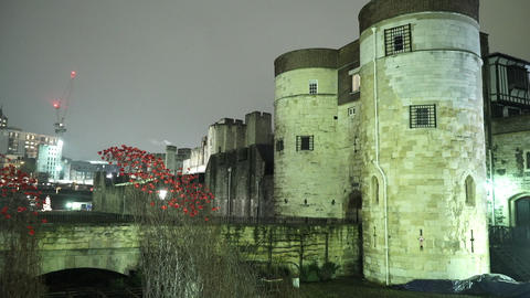 The Tower of London by night - LONDON, ENGLAND NOVEMBER 20, 2014 Live Action